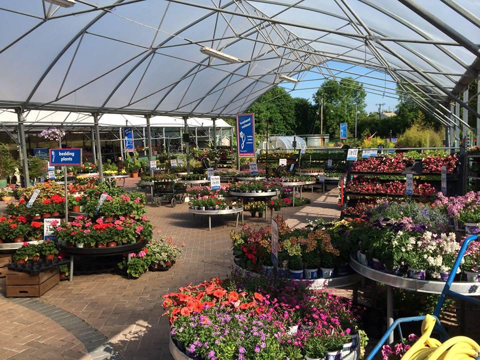 Garden Centre: Garden Centres In Ireland